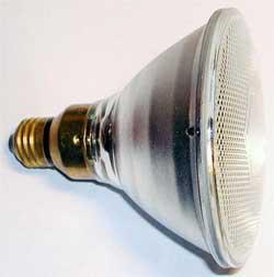 Как экономить электроэнергию? Галогенные лампы